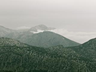 Wild und einsam. Sardinien von seiner schwarzschafigen Seite.